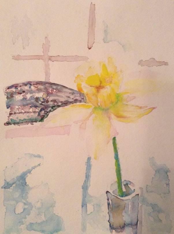 Winters Daffodil