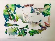 Last Azeleas of spring